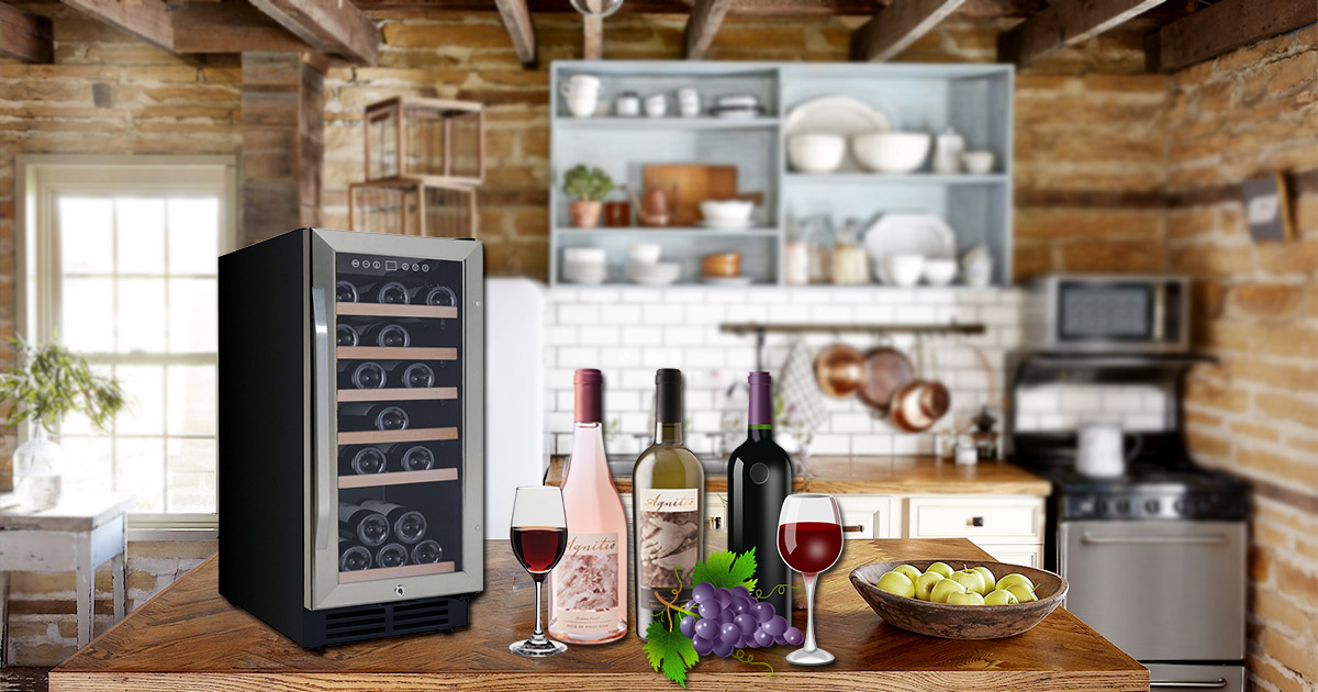 Top 7 Avanti Wine Coolers Review in 2019 | Our Best picks ...