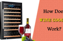 How does Wine Cooler Work? – Guide on How to use Wine Cooler