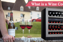 What are Wine Coolers? Check Features and Uses of the Best Wine Cooler